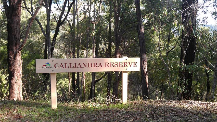 calliandra sign